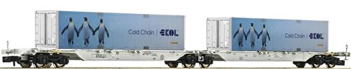 AAE Sggmrs ekol Penguin Double Container Wagon VI - Fleischmann 825330  E Shop item