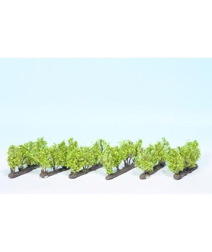 Vines set of 24 - Noch 51545